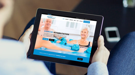 Noosa sports and spinal physiotherapy website